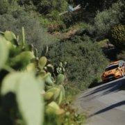 Simone Campedelli al Rally Targa Florio 2019