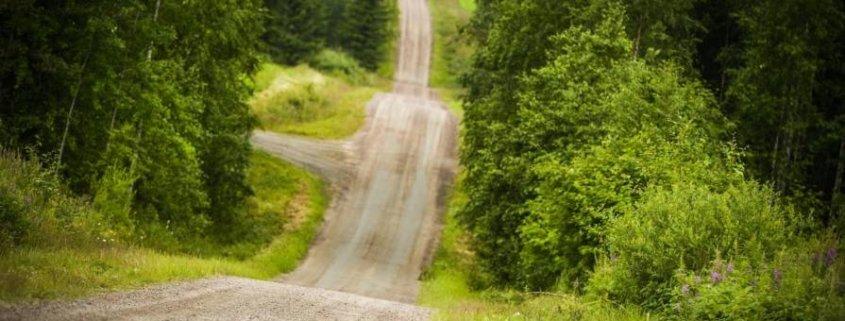 Le Ford M-Sport pronte ai salti del Rally di Finlandia